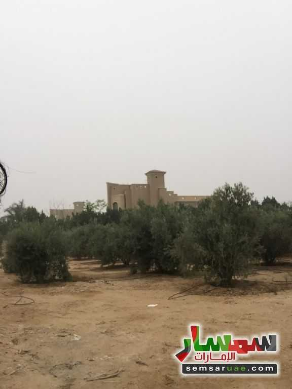 صورة 5 - For sale the best land location in Sheikh Zayed for real estate investment للبيع الشيخ زايد 6 أكتوبر