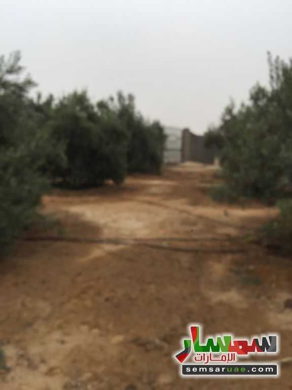 صورة 8 - For sale the best land location in Sheikh Zayed for real estate investment للبيع الشيخ زايد 6 أكتوبر