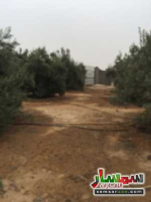 For sale the best land location in Sheikh Zayed for real estate investment للبيع الشيخ زايد 6 أكتوبر - 8