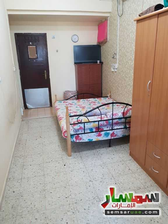 Photo 2 - Apartment 1 bedroom 1 bath 100 sqm lux For Rent Al Mushrif Abu Dhabi