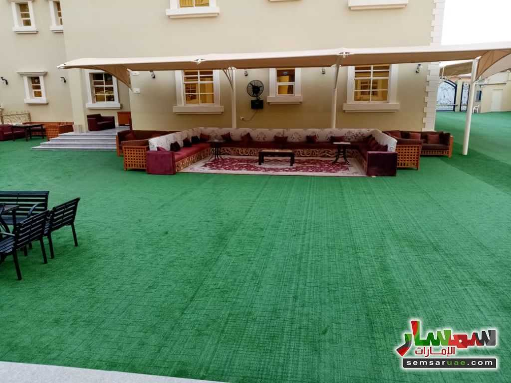 Photo 3 - Apartment 1 bedroom 1 bath 70 sqm extra super lux For Rent Al Khabisi Al Ain