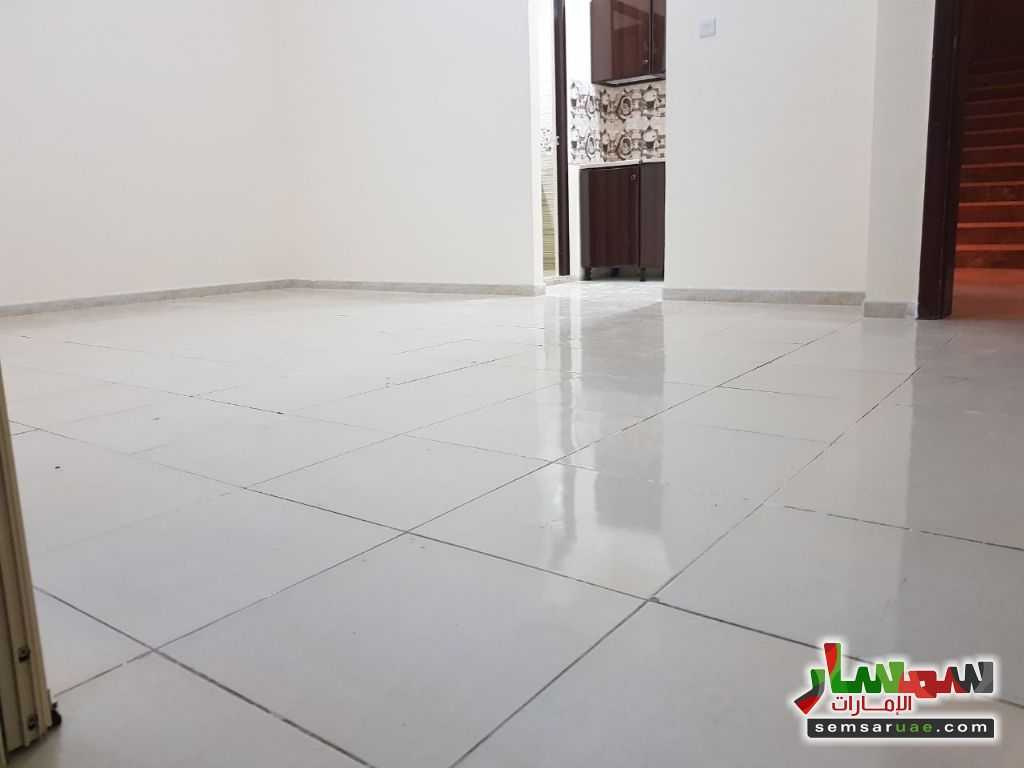 Photo 1 - Apartment 1 bedroom 1 bath 35 sqm extra super lux For Rent Shakhbout City Abu Dhabi