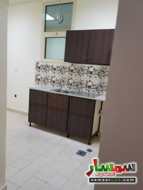 Photo 3 - Apartment 1 bedroom 1 bath 35 sqm extra super lux For Rent Shakhbout City Abu Dhabi