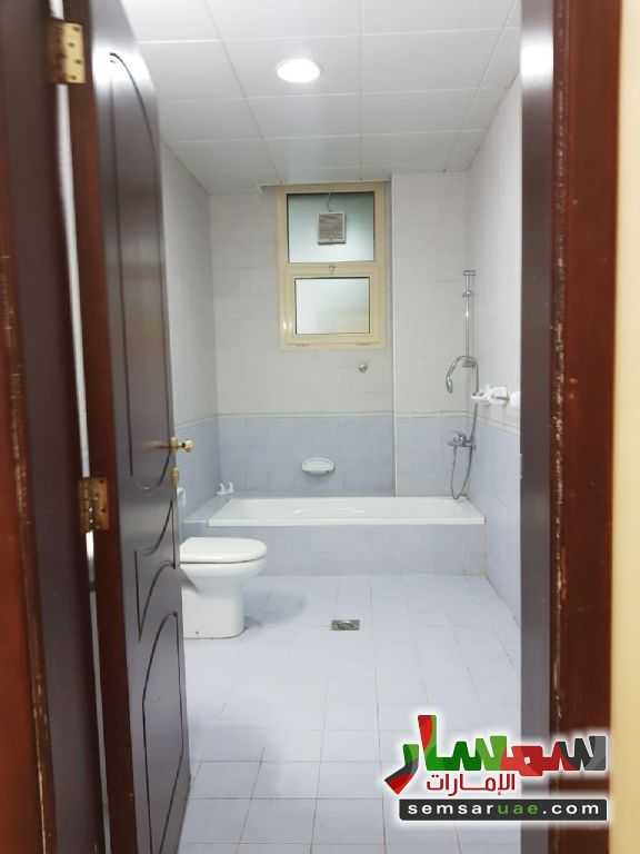 Photo 4 - Apartment 1 bedroom 1 bath 35 sqm extra super lux For Rent Shakhbout City Abu Dhabi