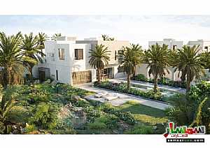 Land 7,000 sqft For Sale Saadiyat Island Abu Dhabi - 10