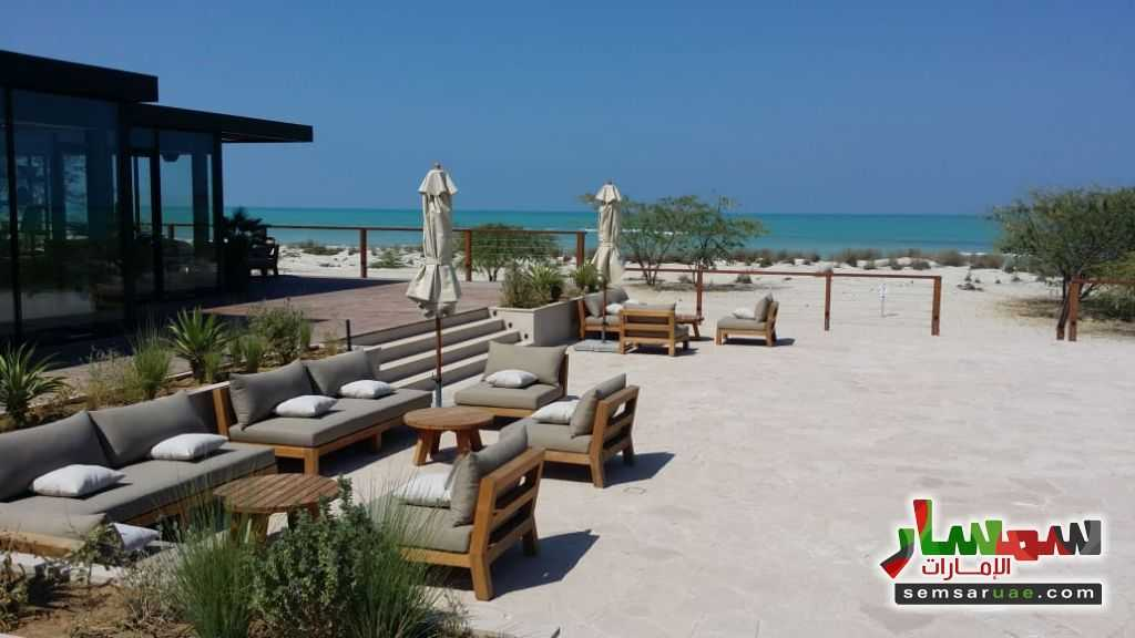 Photo 9 - Land 7,000 sqft For Sale Saadiyat Island Abu Dhabi