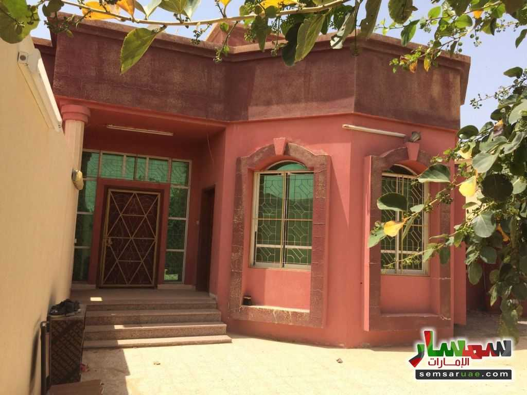 Photo 16 - Villa 3 bedrooms 3 baths 3,000 sqft lux For Rent Al Hamidiya Ajman