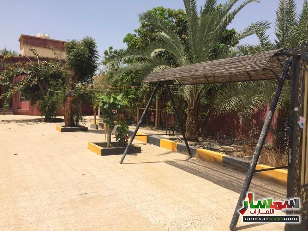 Photo 17 - Villa 3 bedrooms 3 baths 3,000 sqft lux For Rent Al Hamidiya Ajman