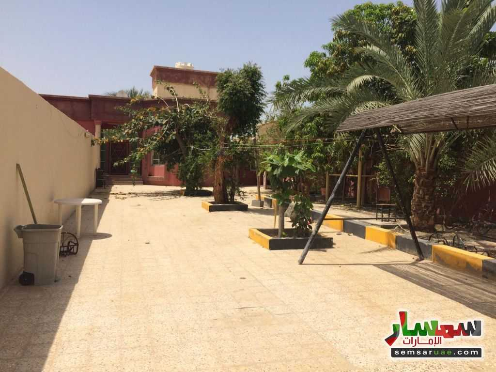 Photo 18 - Villa 3 bedrooms 3 baths 3,000 sqft lux For Rent Al Hamidiya Ajman