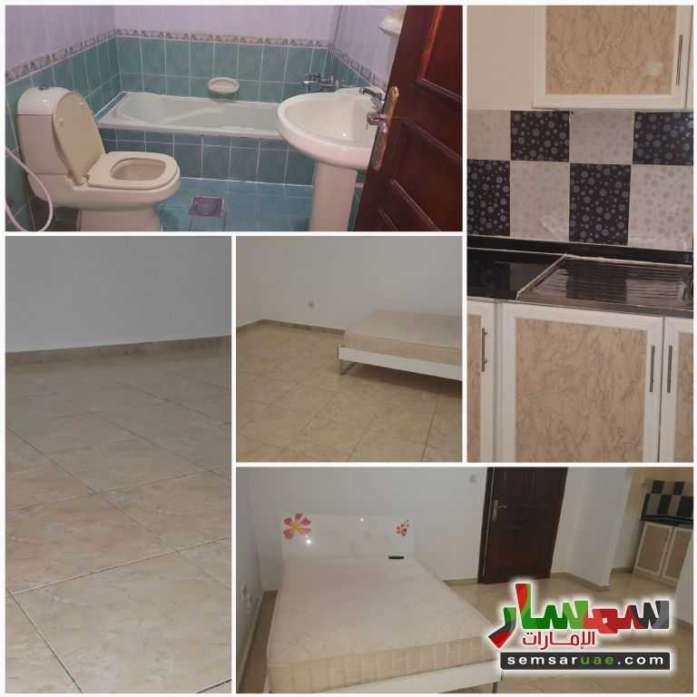 Photo 1 - Apartment 1 bedroom 1 bath 25 sqm super lux For Rent Muroor Area Abu Dhabi