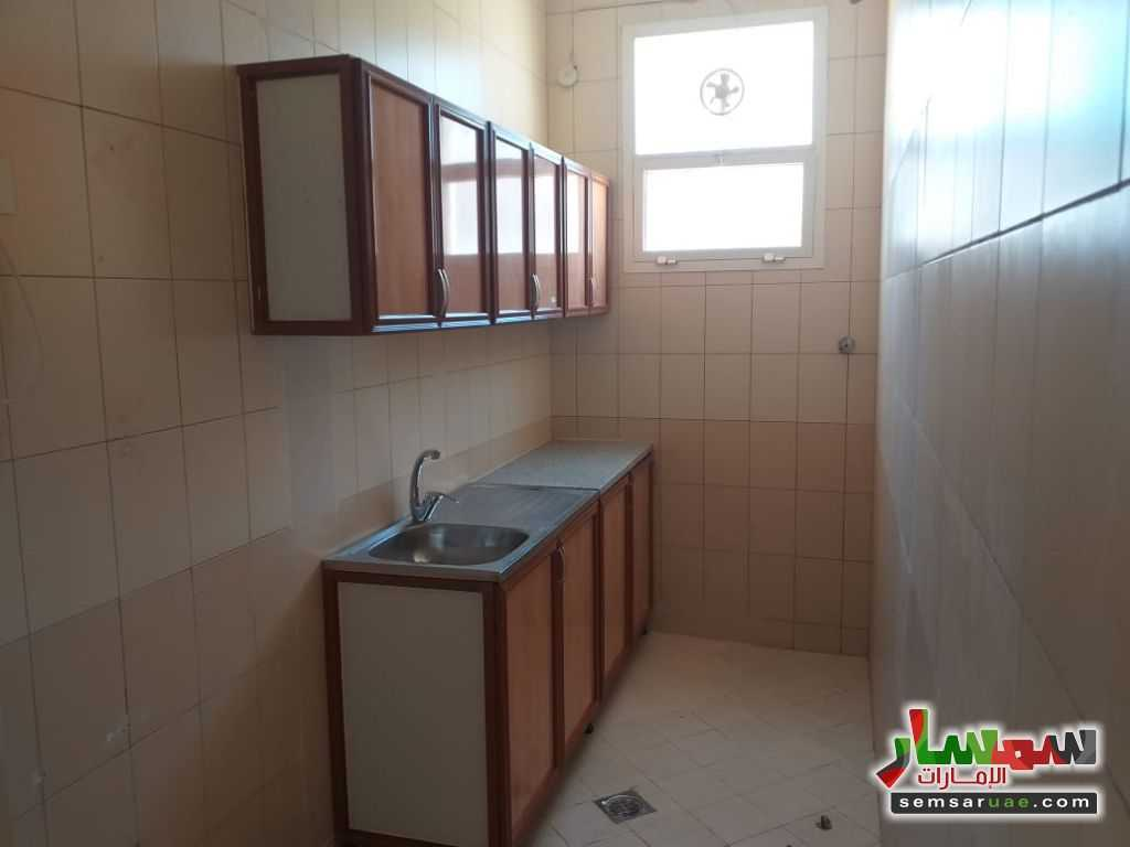 Photo 3 - Apartment 1 bedroom 1 bath 1,100 sqm extra super lux For Rent Shakhbout City Abu Dhabi