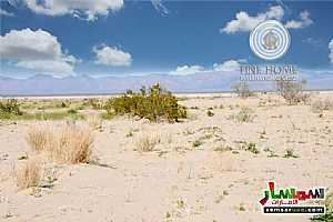 Ad Photo: Land 11528 sqft in Al Shamkha  Abu Dhabi