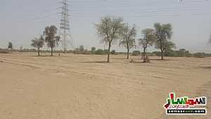 Ad Photo: Farm 110000 sqft in Ras Al Khaimah Creek  Ras Al Khaimah