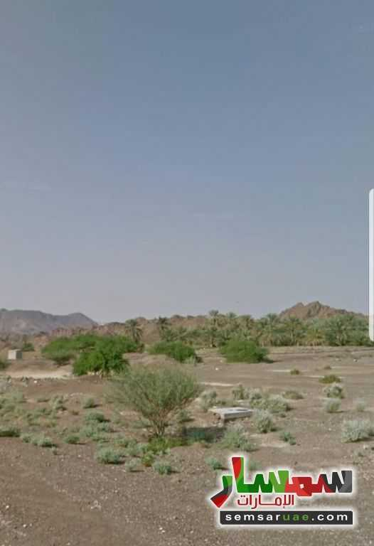 Photo 1 - Land 5000 sqft For Sale Masfut Ajman