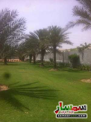 Ad Photo: Farm 140000 sqft in Al Zubair  Sharjah