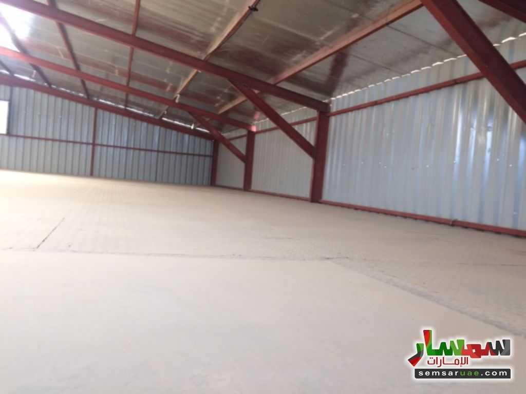Photo 1 - Commercial 700 sqm For Rent Al Ain Industrial Area Al Ain