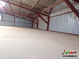 Ad Photo: Commercial 700 sqm in Al Ain Industrial Area  Al Ain