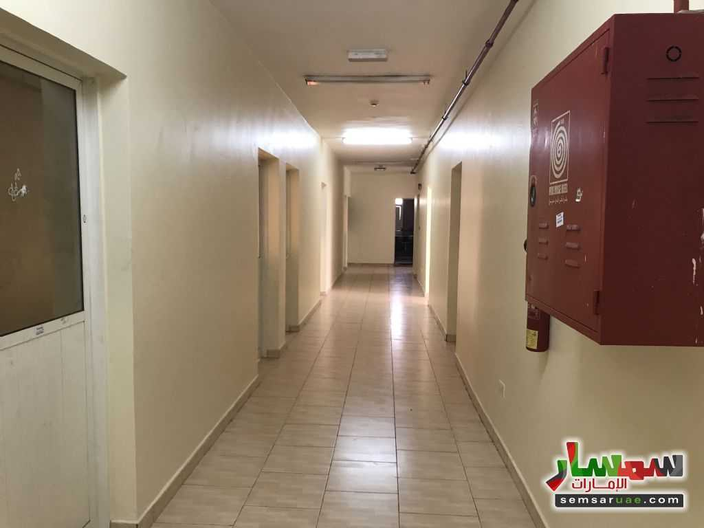 Photo 6 - 21 sqm For Rent Mussafah Abu Dhabi