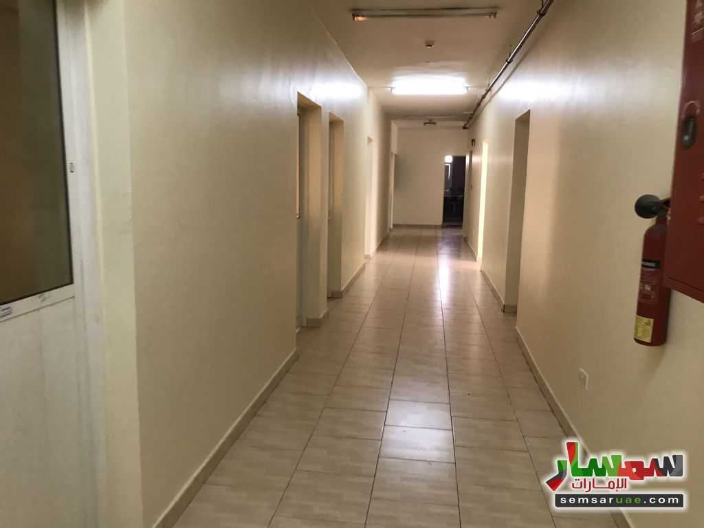Photo 3 - 21 sqm For Rent Mussafah Abu Dhabi