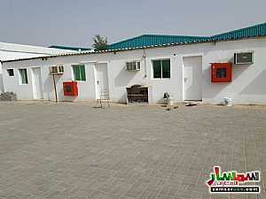Ad Photo: 2 stores for rent in kharir area 200m each infront emirates school for driving in Al Ain Industrial Area  Al Ain