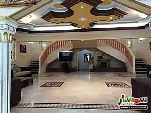 Ad Photo: 2BHK Fully Furnished Flat with Gym, kid's playground, pool, lounge & cafe located at Al Towayya in Al Mutarad  Al Ain