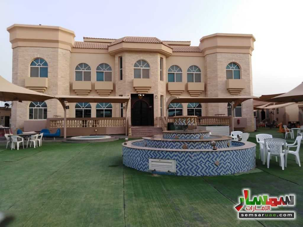 صورة 5 - 2BHK Fully Furnished Flat with Gym, kid's playground, pool, lounge & cafe located at Al Towayya للإيجار المطارد العين