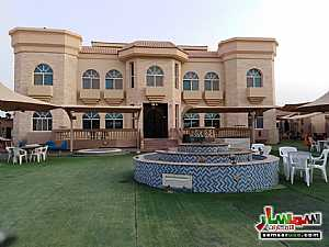 2BHK Fully Furnished Flat with Gym, kid's playground, pool, lounge & cafe located at Al Towayya للإيجار المطارد العين - 5