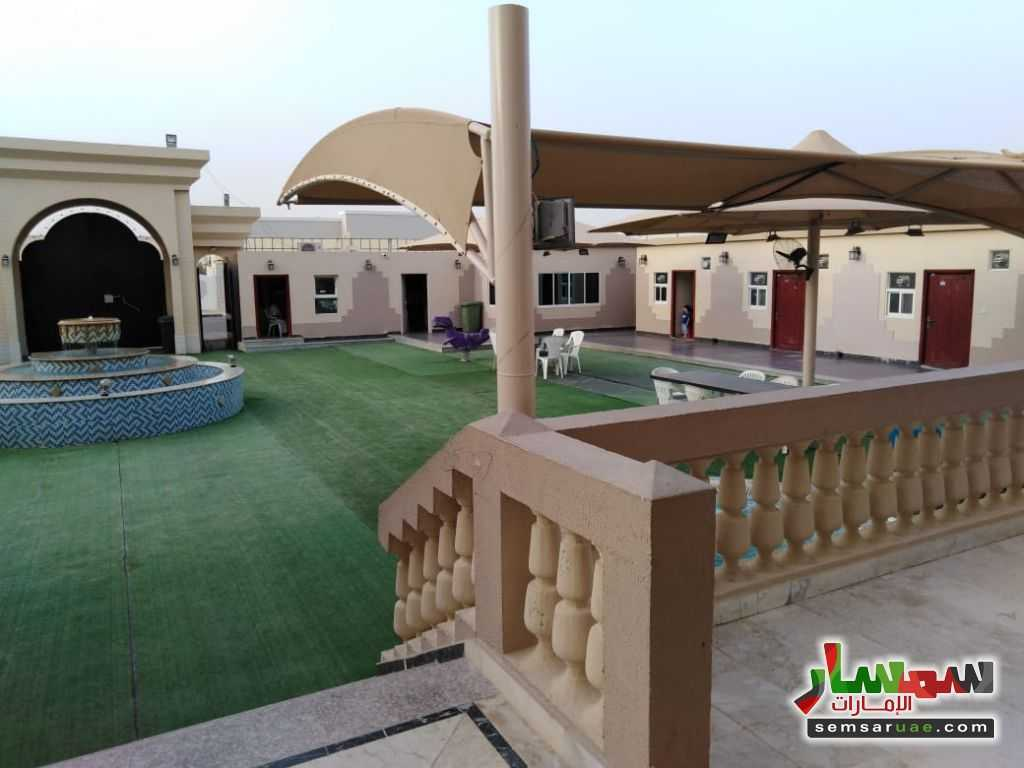 صورة 8 - 2BHK Fully Furnished Flat with Gym, kid's playground, pool, lounge & cafe located at Al Towayya للإيجار المطارد العين