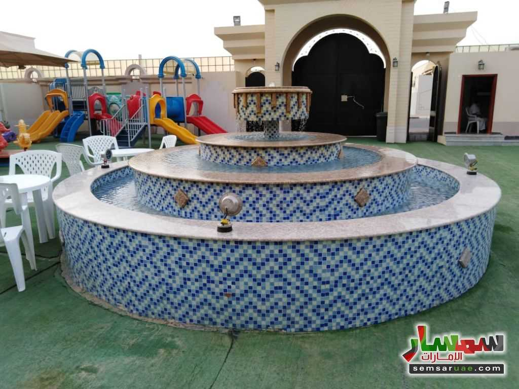 صورة 9 - 2BHK Fully Furnished Flat with Gym, kid's playground, pool, lounge & cafe located at Al Towayya للإيجار المطارد العين