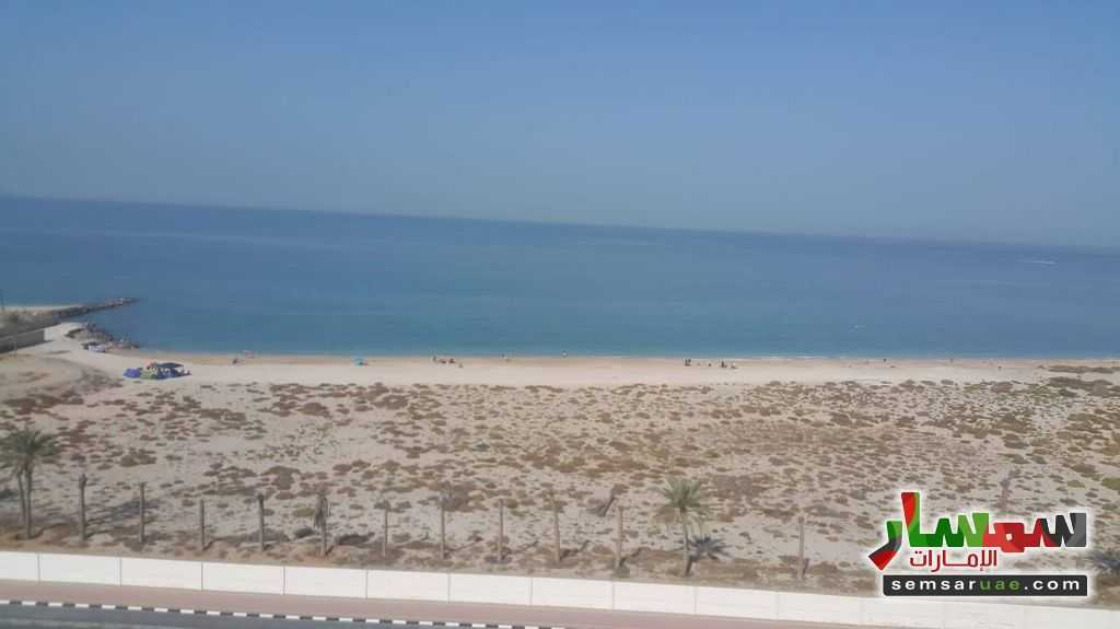 صورة 1 - AED370000 Buy a unique furnished studio with a panoramic sea view in Ras Al Khaimah, Al Hamra للبيع الحمرا رأس الخيمة