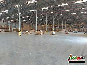 صورة الاعلان: Huge Warehouse HighWay Facing Direct Acess from MBZ Road 12% Net Return في جبل علي دبي