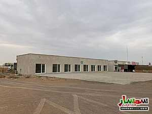 Ad Photo: Commercial 300 sqft in Falaj Al Moalla  Umm Al Quwain